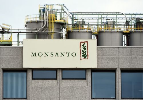 Monsanto plaide coupable d'avoir répandu un pesticide interdit à Hawaï
