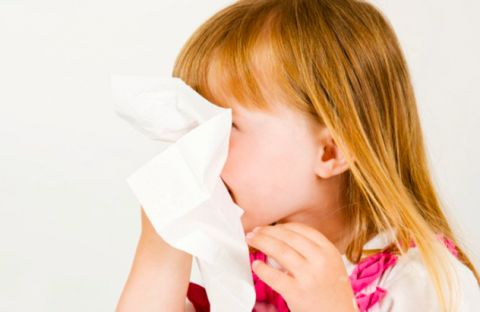 La rhinite allergique Que peut-on faire ?