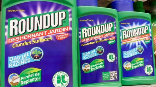 Gouvernement:  vers un report de l'interdiction du glyphosate ?